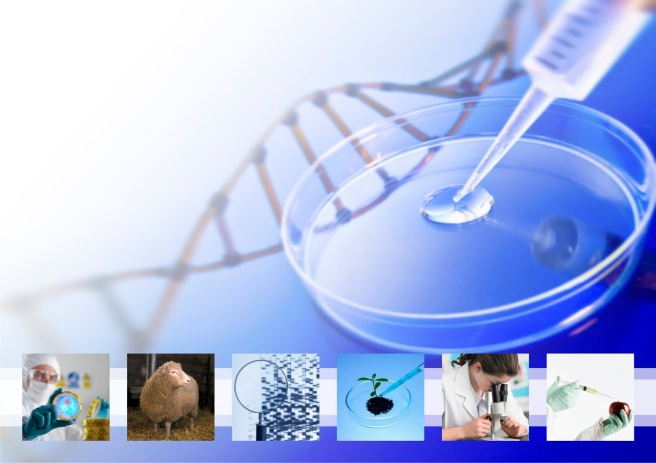 bioteknologia
